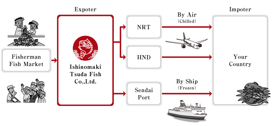 From Ishinomaki to the world by own structured oversea distribution logistics we deliver you fresh seafood.